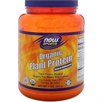 Now Organic Plant Protein 907 g