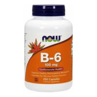 Now B-6 100 mg 250 caps